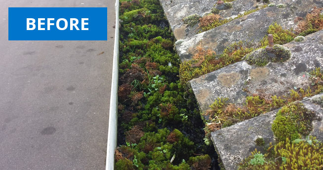 Gutter Vac Moss Cleaning Services Before Facilities Management Cleaning